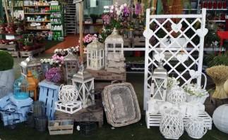 decoracion floral__bodas_Poveda_plantas_Just Married Market