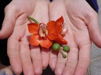 Flor detalee de bodas