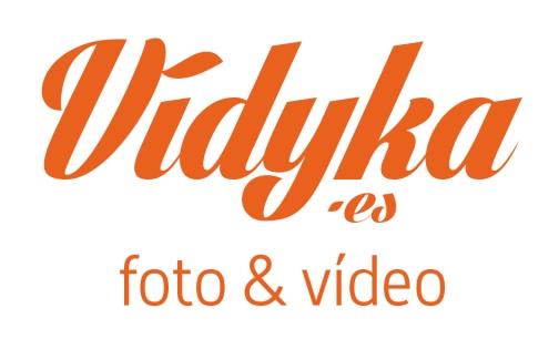 logo-vidyka