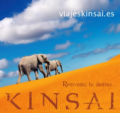 Kinsai_Cartel_Elefantes