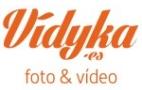 logo vidyka